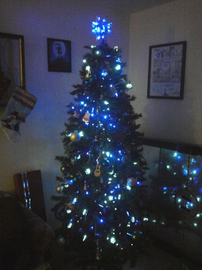 Blue tree!